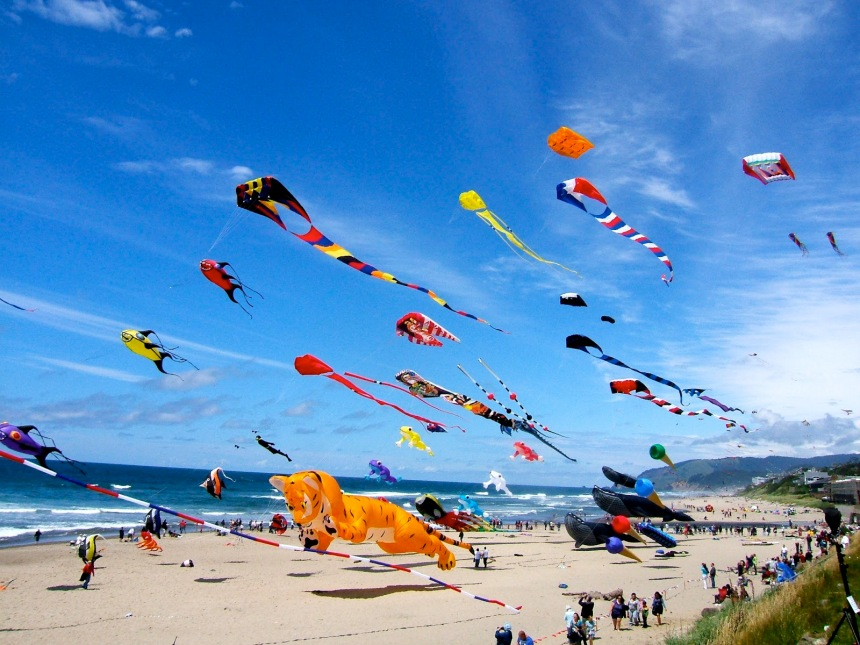 Kites-flying-beach-north-cyprus.jpg