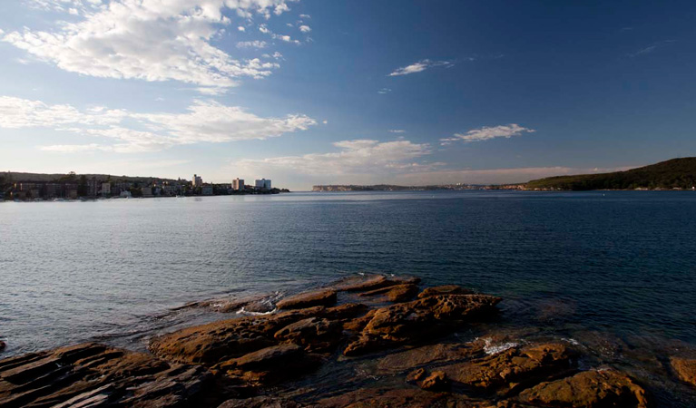 manly-scenic-walk-01